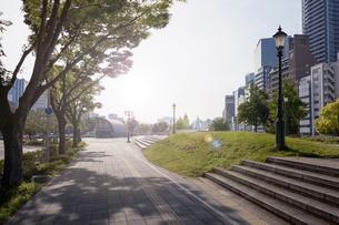 遊歩道と光と街灯の写真素材 [FYI04519367]