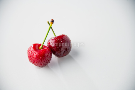 Ripe red cherries on white background.の写真素材 [FYI04519782]