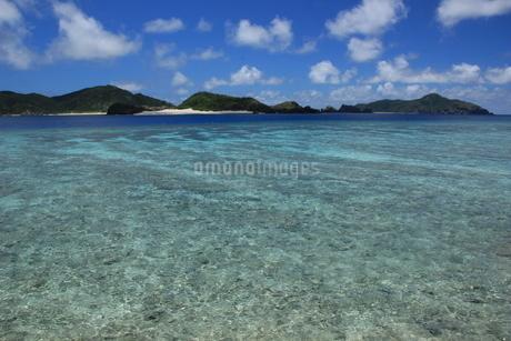 沖縄の海 阿真ビーチの写真素材 [FYI04520516]