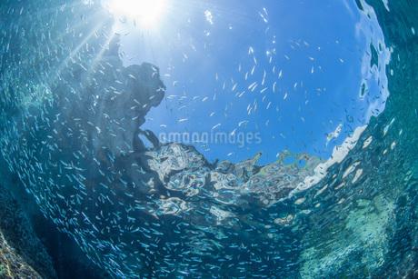 水中に降り注ぐ光の写真素材 [FYI04520580]