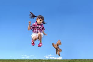 青空を背景に草地でペットの犬と一緒にジャンプをする小さな女の子の写真素材 [FYI04521254]