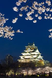大阪城と夜桜の写真素材 [FYI04521501]