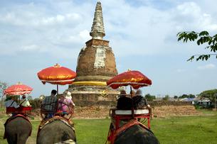 タイ アユタヤ 象乗り観光の写真素材 [FYI04521921]
