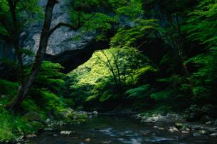 帝釈峡 雄橋 広島県の写真素材 [FYI04522241]