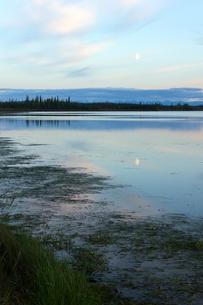 月影が映るアラスカの湿地帯の写真素材 [FYI04523141]