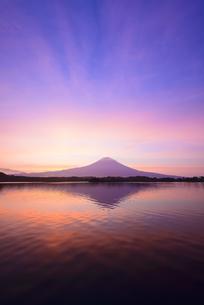 静岡県 田貫湖より朝焼けと富士の写真素材 [FYI04523350]