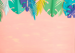 Paper tropical leaves on pink backgroundの写真素材 [FYI04523490]