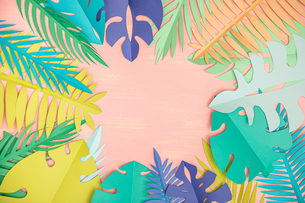 Paper tropical leaves on pink backgroundの写真素材 [FYI04523491]
