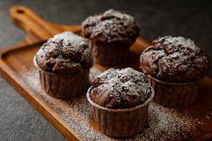 チョコレートマフィンの写真素材 [FYI04523610]