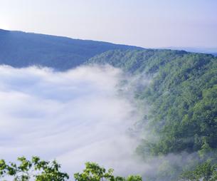 北海道 自然 風景 摩周湖 雲海の写真素材 [FYI04524171]