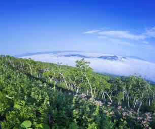北海道 自然 風景 硫黄岳 雲海の写真素材 [FYI04524179]