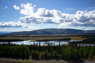アラスカ、夏に水が染み出す湿地帯の写真素材 [FYI04524296]