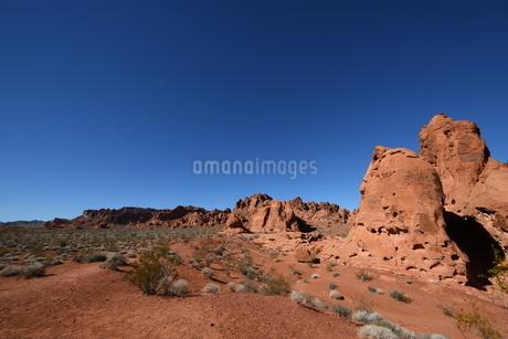 アメリカの写真素材 [FYI04524485]