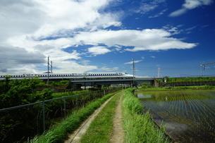 あぜ道と東海道新幹線の写真素材 [FYI04525112]