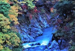 奥多摩渓谷の深まり行く秋色と清流 静寂感を俯瞰の写真素材 [FYI04525168]