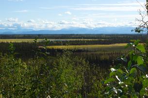 アラスカの大平原の写真素材 [FYI04525281]