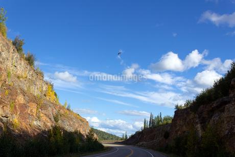 崖の谷間を曲がるアラスカハイウェイの写真素材 [FYI04525283]