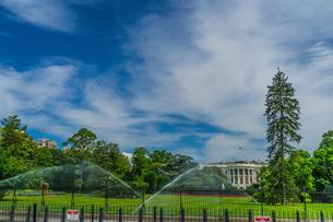 ホワイトハウス(ワシントンDC)の写真素材 [FYI04525792]