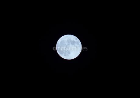 美しい満月のイメージの写真素材 [FYI04525821]