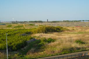 仙台市荒浜小学校から見える荒浜海岸の写真素材 [FYI04526225]
