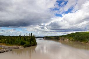 アラスカ州Tanana River(タナナ川)の写真素材 [FYI04526700]
