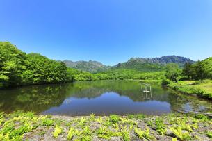 夏の戸隠連峰と鏡池の写真素材 [FYI04527514]