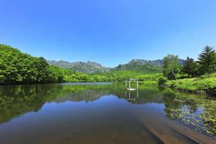 夏の戸隠連峰と鏡池の写真素材 [FYI04527515]