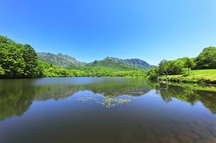 夏の戸隠連峰と鏡池の写真素材 [FYI04527517]