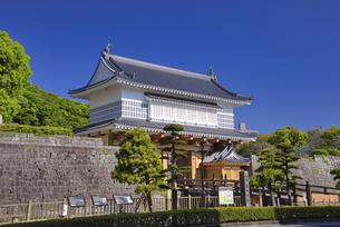 御楼門と鶴丸城跡の写真素材 [FYI04527785]