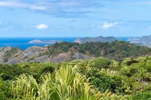 ハートロック登山道から眺める風景の写真素材 [FYI04527844]