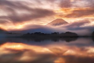 精進湖からみた雲海と富士山の写真素材 [FYI04527881]