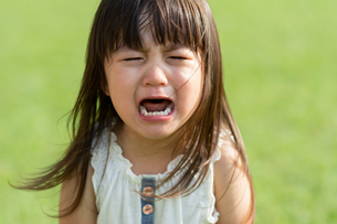 泣く女の子の写真素材 [FYI04528163]
