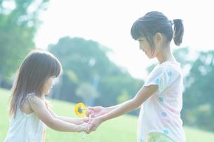 花を渡す姉妹の写真素材 [FYI04528172]