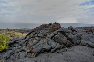 ハワイ州 ハワイ島 ハワイ火山国立公園のチェーンオブクレーターズロードの写真素材 [FYI04528537]