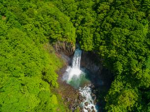 新緑の苗名滝 日本の滝百選 5月の写真素材 [FYI04528709]