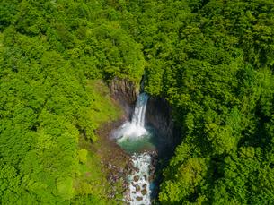 新緑の苗名滝 日本の滝百選 5月の写真素材 [FYI04528710]