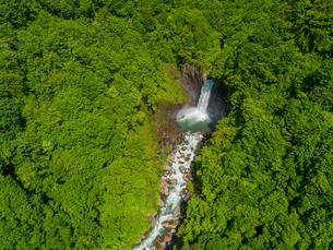 新緑の苗名滝 日本の滝百選 5月の写真素材 [FYI04528716]