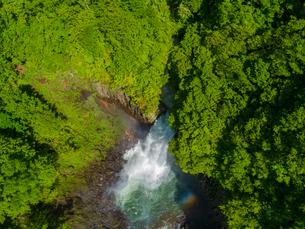 新緑の苗名滝 日本の滝百選 5月の写真素材 [FYI04528721]