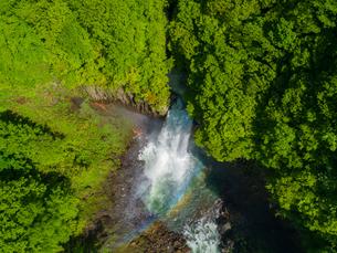 新緑の苗名滝 日本の滝百選 5月の写真素材 [FYI04528729]