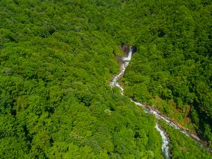 新緑の苗名滝 日本の滝百選 5月の写真素材 [FYI04528743]