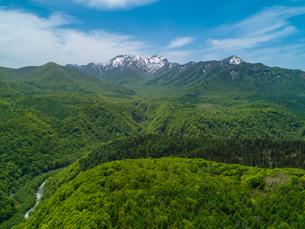 新緑の黒姫山北山麓 5月の写真素材 [FYI04528748]