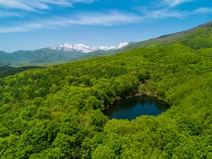 新緑の妙高山南山麓仙人池と遥か天狗原山と金山を望む 5月の写真素材 [FYI04528753]