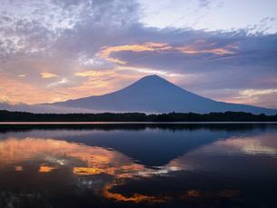 静岡県 田貫湖より望む朝焼けと富士山の写真素材 [FYI04528833]