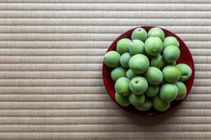 梅の恵みの写真素材 [FYI04528979]