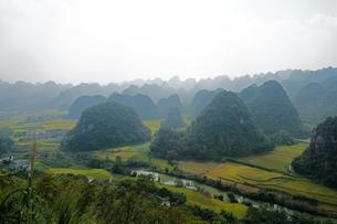中国旅行・カルスト地形の万峰林の写真素材 [FYI04529098]