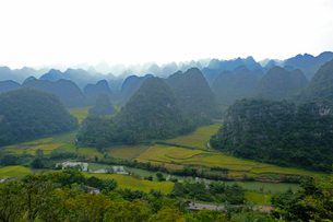 中国旅行・カルスト地形の万峰林の写真素材 [FYI04529099]