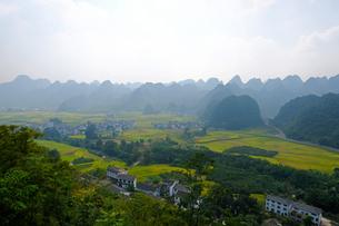 中国旅行・カルスト地形の万峰林の写真素材 [FYI04529100]