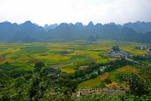 中国旅行・カルスト地形の万峰林の写真素材 [FYI04529101]