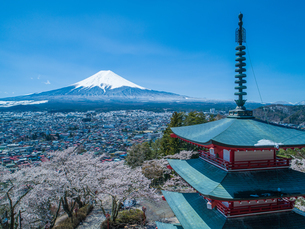 新倉山浅間公園の忠霊塔と桜と富士山の写真素材 [FYI04529218]