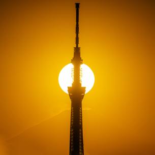 東京スカイツリーに串刺しの太陽と富士山の写真素材 [FYI04529273]